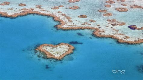 The heart of the Great Barrier Reef Queensland heart